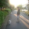 夕方の散歩道・・・